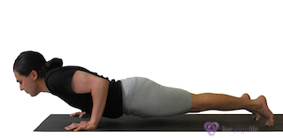 Yoga Pose Chaturanga Dandasana