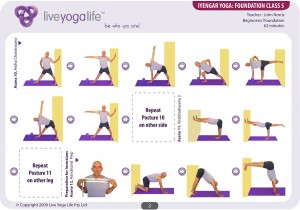 Iyengar Yoga Foundation Class 5