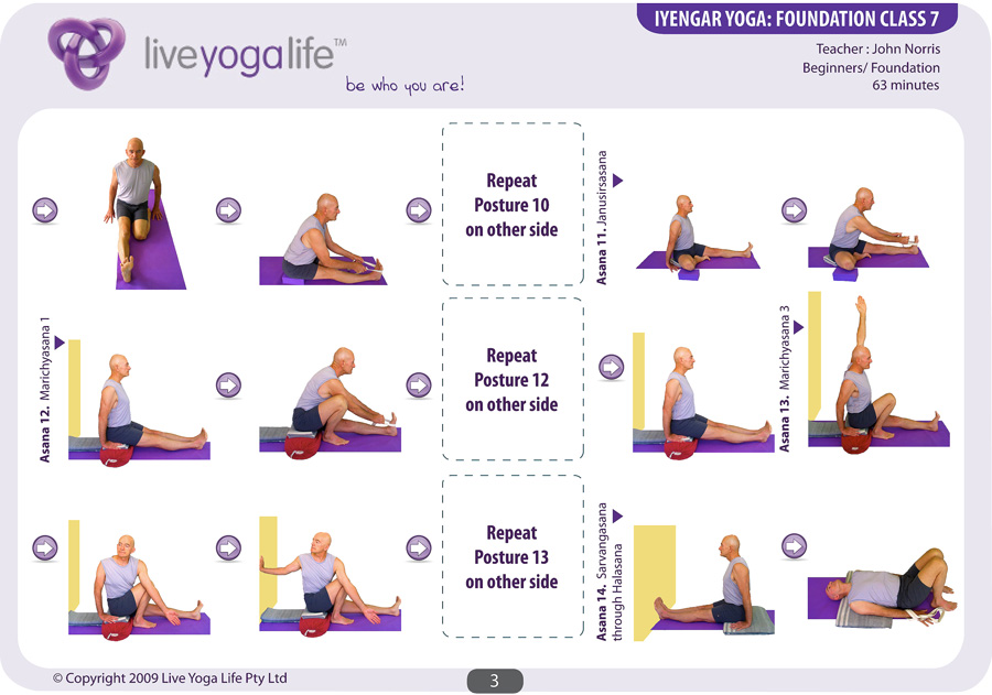 Iyengar Yoga Foundation Complete Set Classes 1 To 7