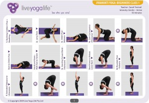 Hatha Yoga for Beginners Class 1