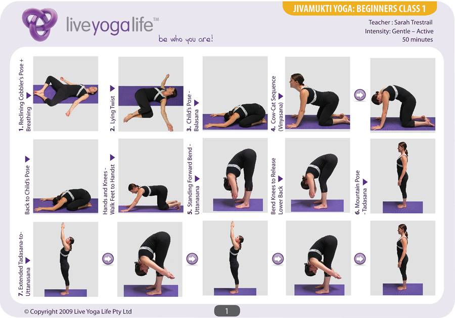 Hatha Yoga for Beginners Class 1 | Live Yoga Life