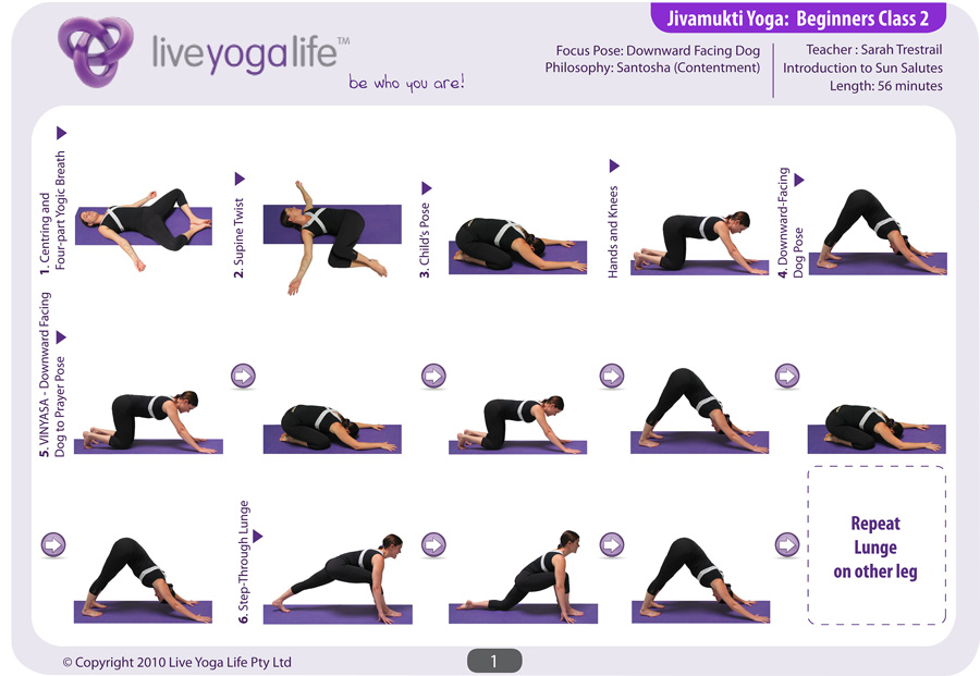 Hatha Yoga For Beginners Complete Set Classes 1 To 7 Live Yoga Life