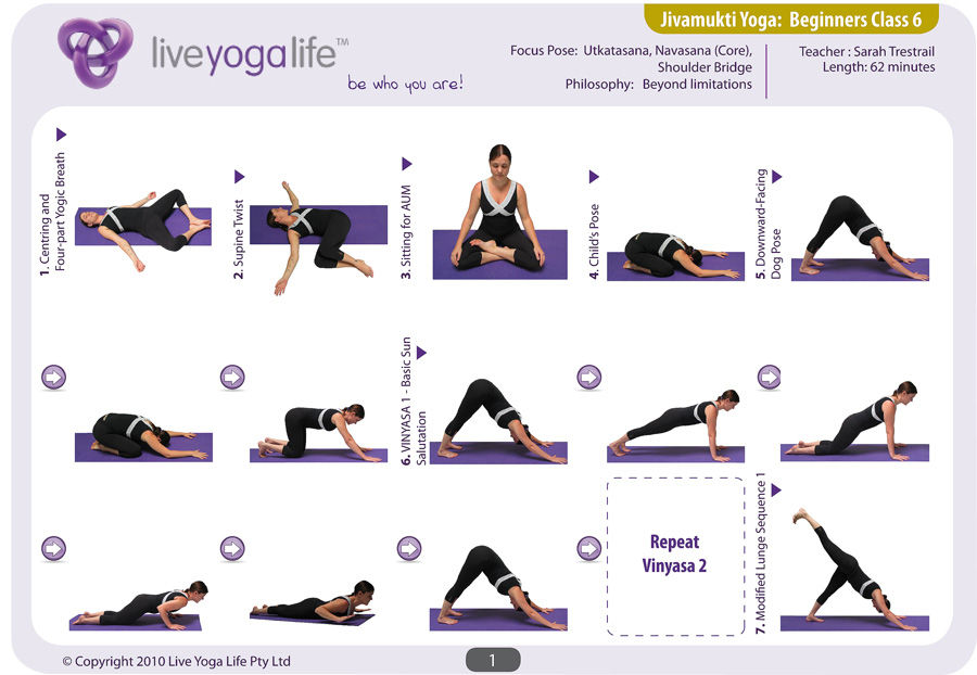 Hatha Yoga for Beginners plete Set Classes 1 to 7