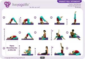 Jivamukti Yoga Intermediate Class 1
