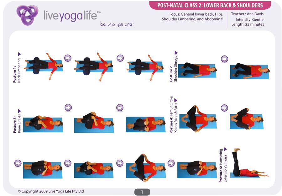 Postnatal Yoga Program Class 2 Live Yoga Life