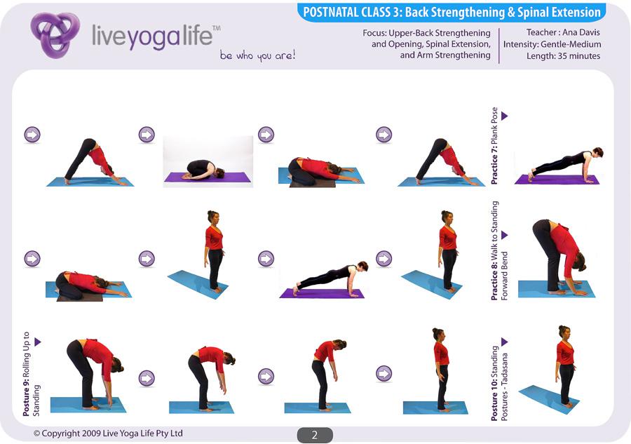 Postnatal Yoga Program Class 3 Live Yoga Life