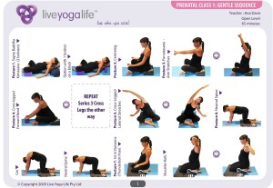 Prenatal Yoga Program Class 1