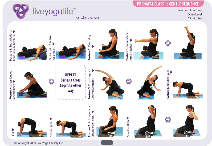 Prenatal Yoga Complete Set Classes 1 To 7