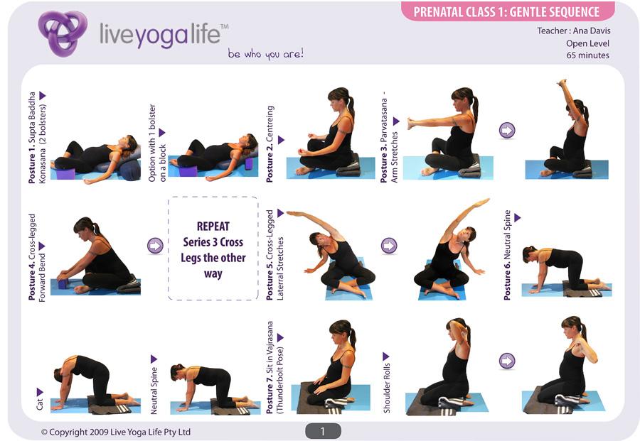 Prenatal Yoga Complete Set Classes 1 To 7 Live Yoga Life