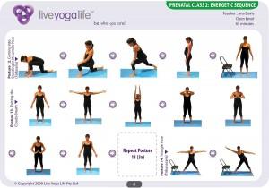 Prenatal Yoga Program Class 2