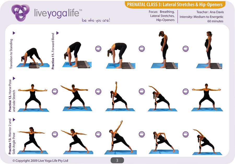 Prenatal Yoga Program Class 3 Live Yoga Life