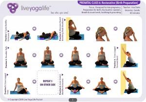 Prenatal Yoga Program Class 6
