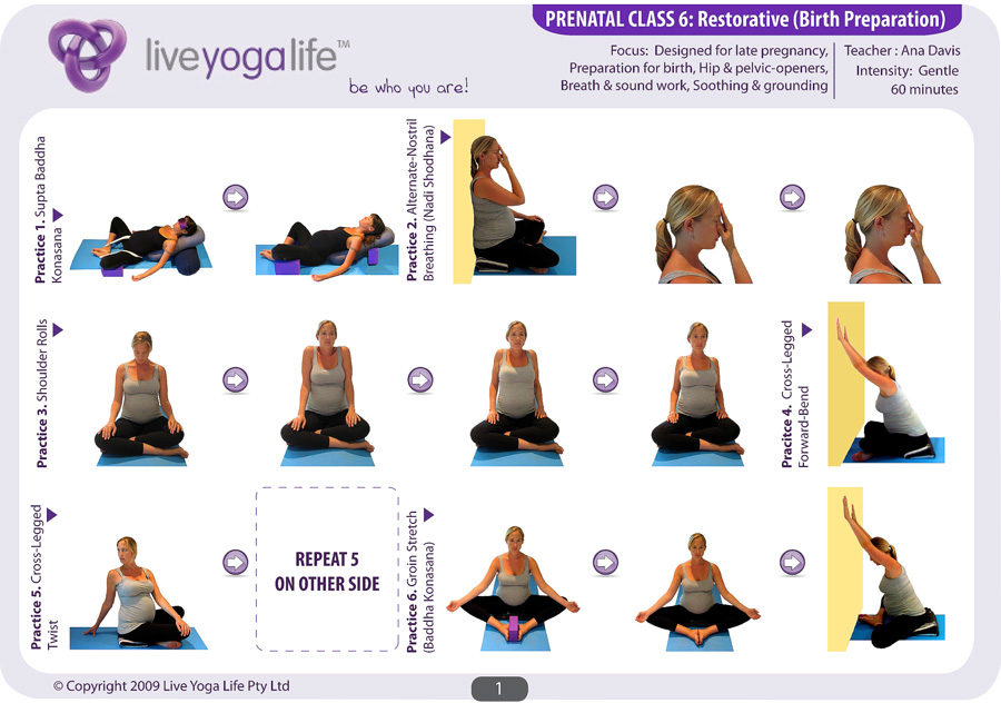 Prenatal Yoga Program Class 6 Live Yoga Life