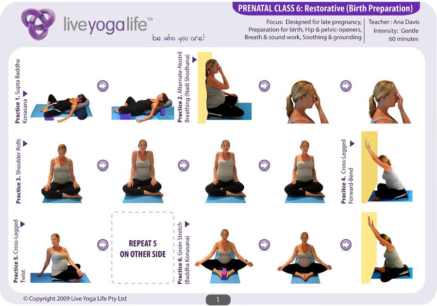 Prenatal Yoga Complete Set (Classes 1 to 7) | Live Yoga Life