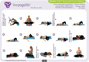 Prenatal Yoga Program Class 7