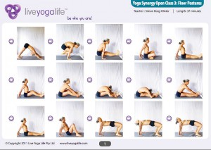 Yoga Synergy Open Class 3: Floor Postures