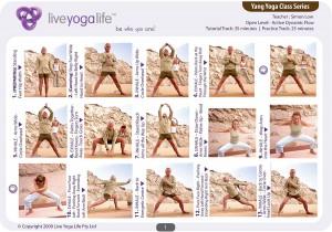 Yang Yoga Open Level Class 1