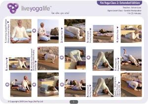 Yin Yoga Open Level Class 2