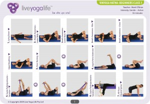 vinyasa hatha beginners complete set classes 1 to 6