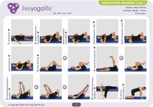 Vinyasa Hatha Beginners Class 1
