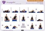Vinyasa Hatha Beginners Class 2