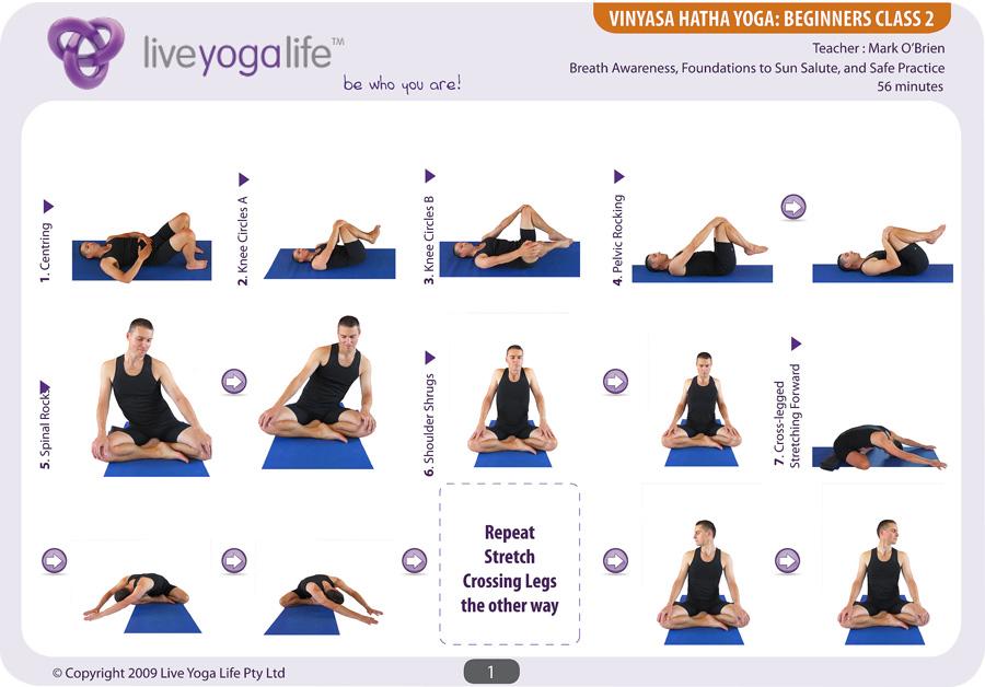Vinyasa Hatha Beginners Class 2 Live Yoga Life