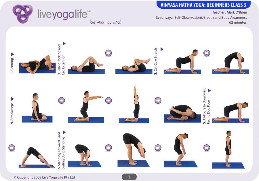 Vinyasa Hatha Beginners Class 3