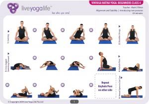 vinyasa hatha beginners class 4  live yoga life