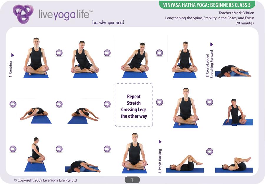 Vinyasa Hatha Beginners Class 5