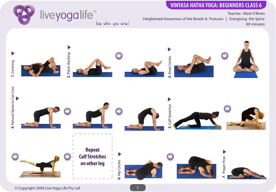 Vinyasa Hatha Beginners Complete Set Classes 1 To 6 Live Yoga Life