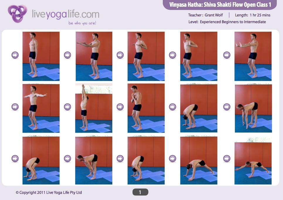 Vinyasa Hatha Shiva Shakti Yoga Routine 1 | Live Yoga Life