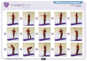 Stress Management (DRU Yoga)