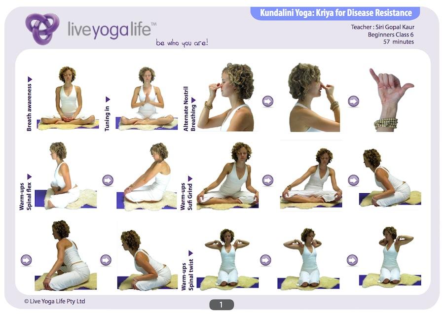 Kundalini Yoga Beginners Class 6 | Live Yoga Life