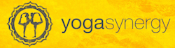 Yoga Synergy Classes - Simon Borg-Olivier